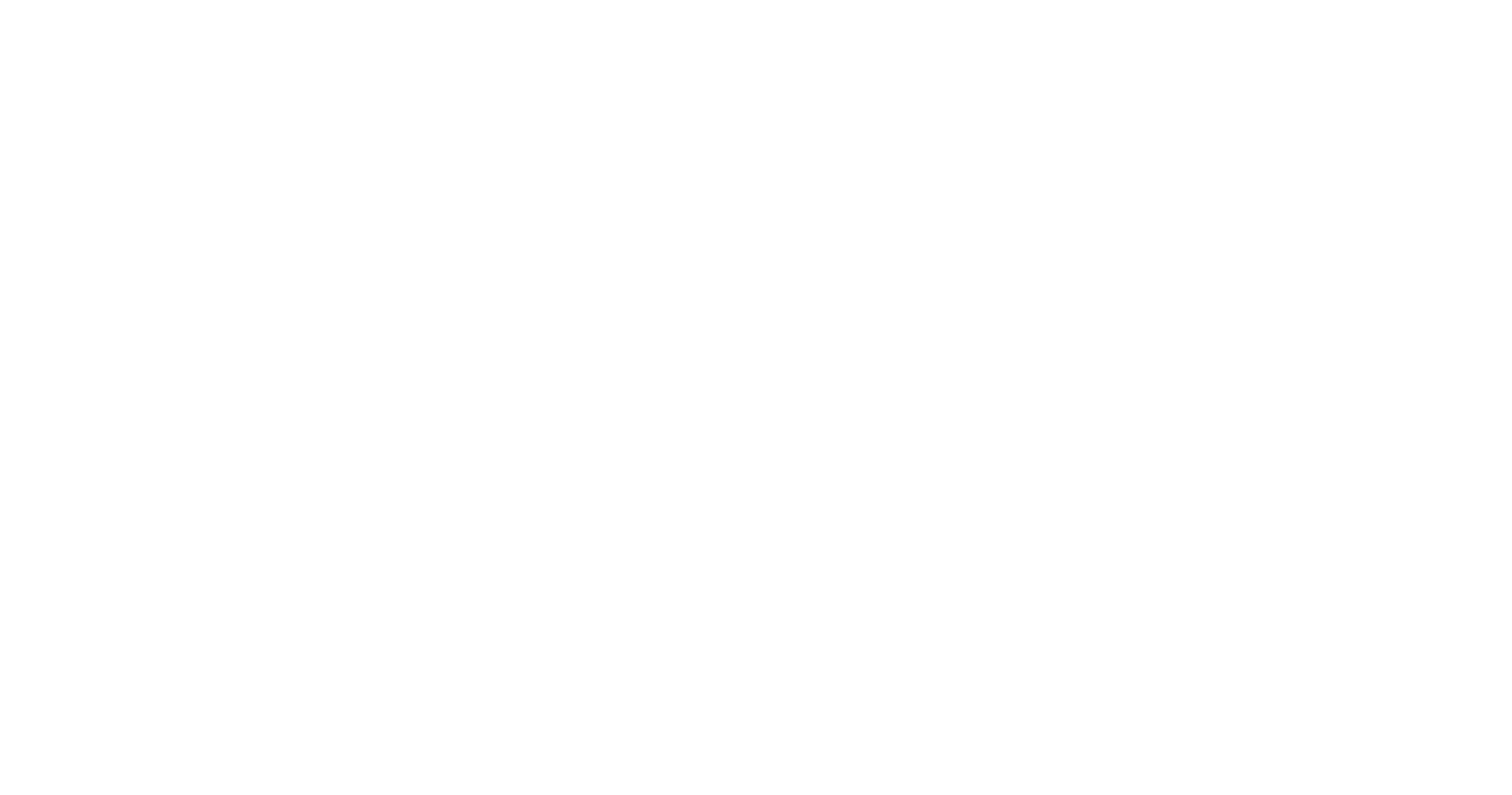 Lagerinnredning AS - Hvit Logo
